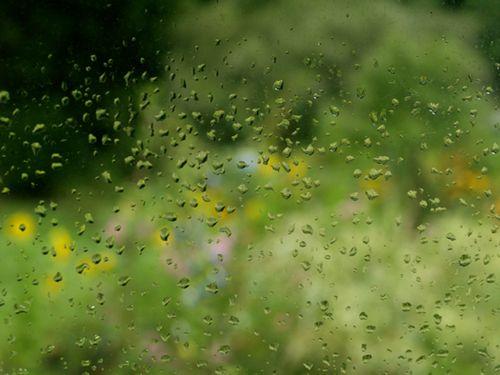 Rain drops on the screen