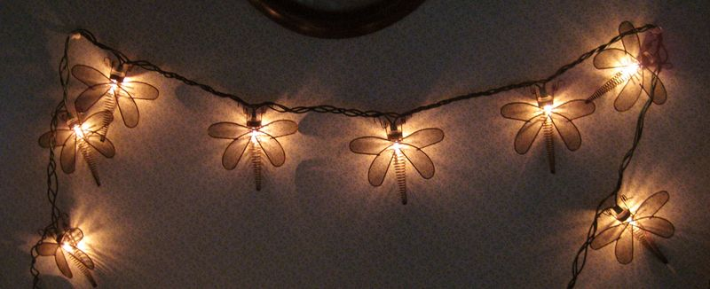 Dragonfly lights