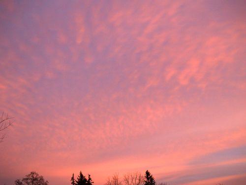 Feathery sunset