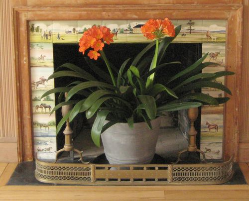 Fireplace tiles with clivia 2