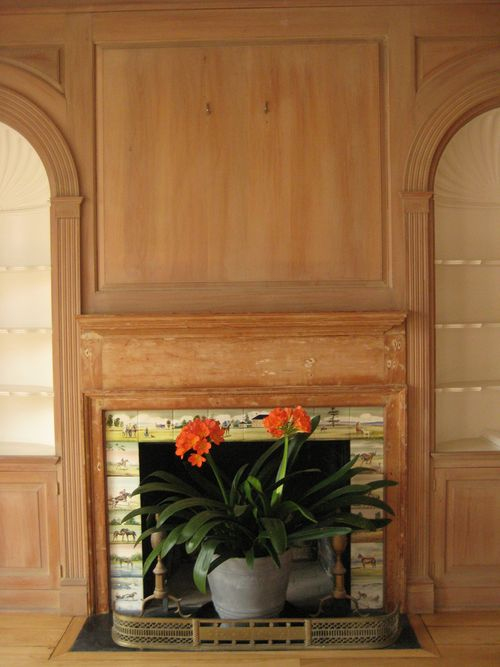Fireplace tiles with clivia