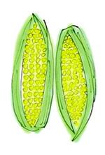 Corn_6