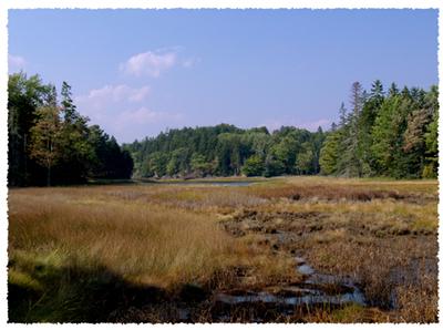 Maine_9