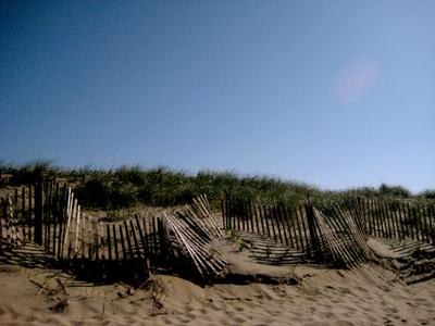 Surfside_dune_fencing_2