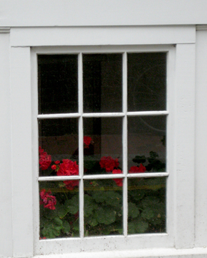 Basement_window