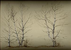 Birches_72