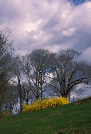 Forsythiaedited_palette_knife_and_daub_s_2