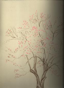 Neighbors_magnolia_sketch_1
