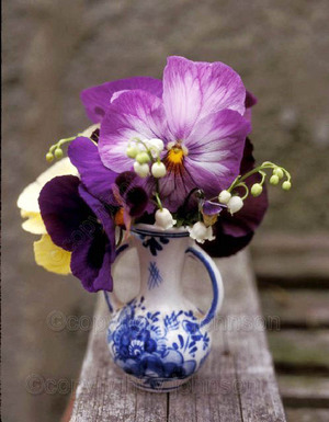 Vase_of_pansies_3