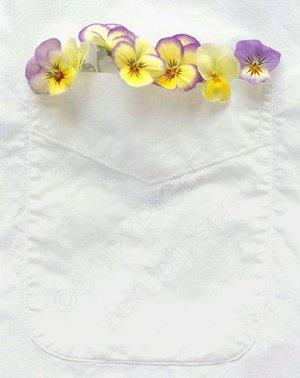 White_shirt5x7_72_watermarkd_1